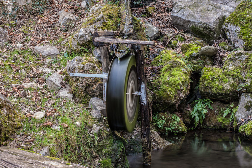 Beauty In Nature Day Green Color Growth Langbart Leaf Motion Nature No People Outdoors Pipe - Tube Plant Rock - Object Sewage Sewer Water Water Pipe Watermill