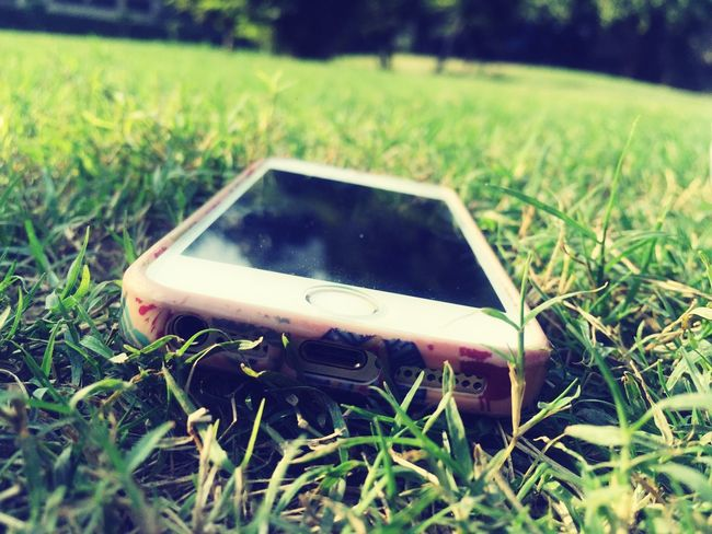 Phone lying in the grass in daylight Phone Grass Daylight Green First Eyeem Photo