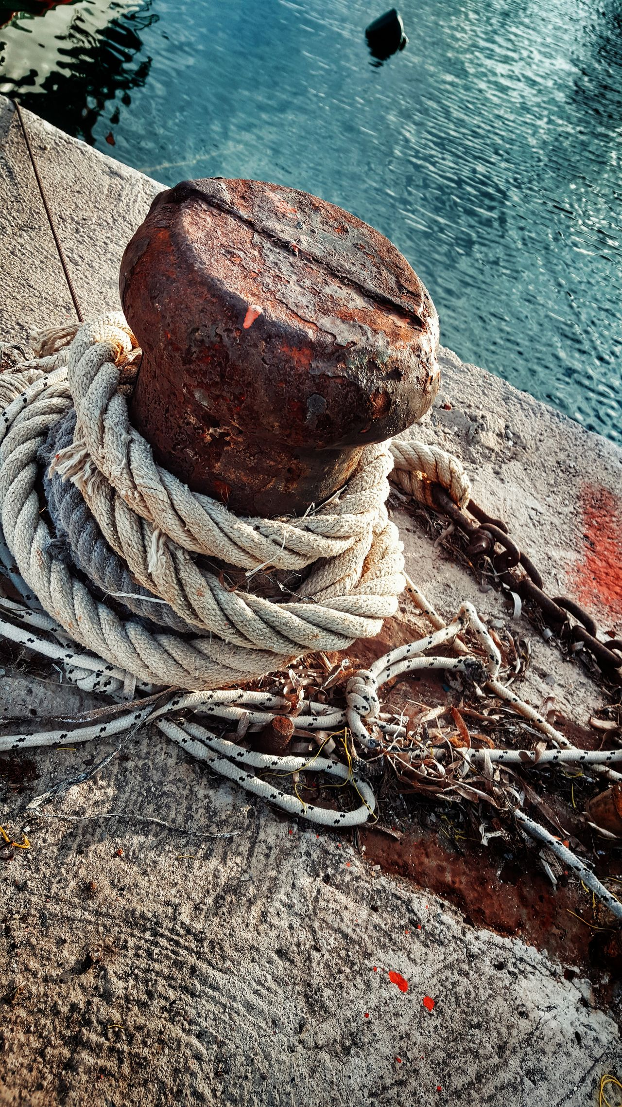 Still Life Seascape Cape  Cape Point StillLifePhotography Capepoint Object Photography Simplicity Saltiness At The Port GrungeStyle Grunge It Up Seawater Ropeway Ropes Rotten Ropeswing  Rope Textures And Surfaces