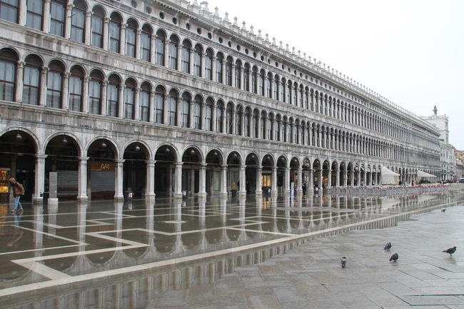 Eye4photography  EyeEm EyeEm Best Edits EyeEm Best Shots EyeEm Gallery EyeEmBestPics Eyemphotography First Eyeem Photo From My Point Of View Italy Italy❤️ My Travel In Italy Photo Photography Popular Photos Purist In Photography Taking Photos The Purist (no Edit, No Filter) Travel Travel Photography Traveling Travelling Venezia Venice Venice, Italy