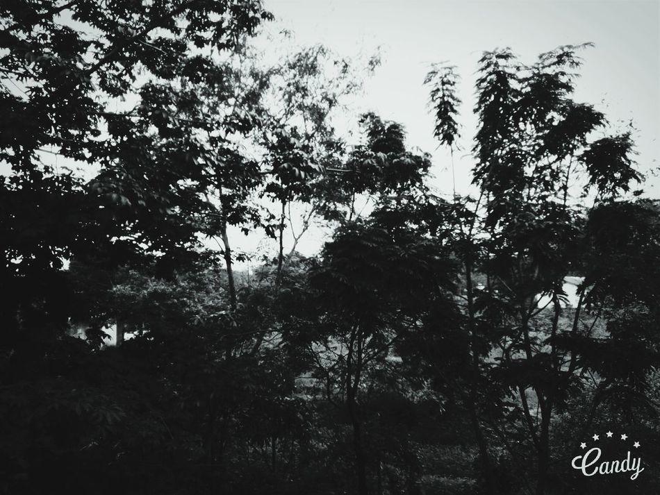Nature Makes Me Smile Nachiket_Bhandare_Photography.