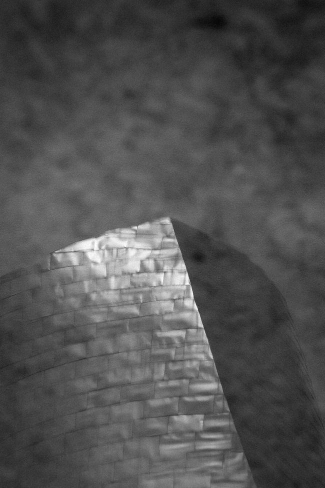Bilbao reflections Guggenheim Reflection Blackandwhite Monochrome Architecture The Innovator Fine Art Photography