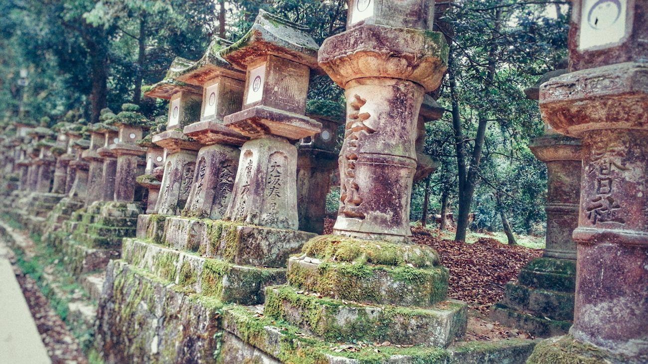 Kasuga-taisha Todaiji Nara Japan Stone Lanterns