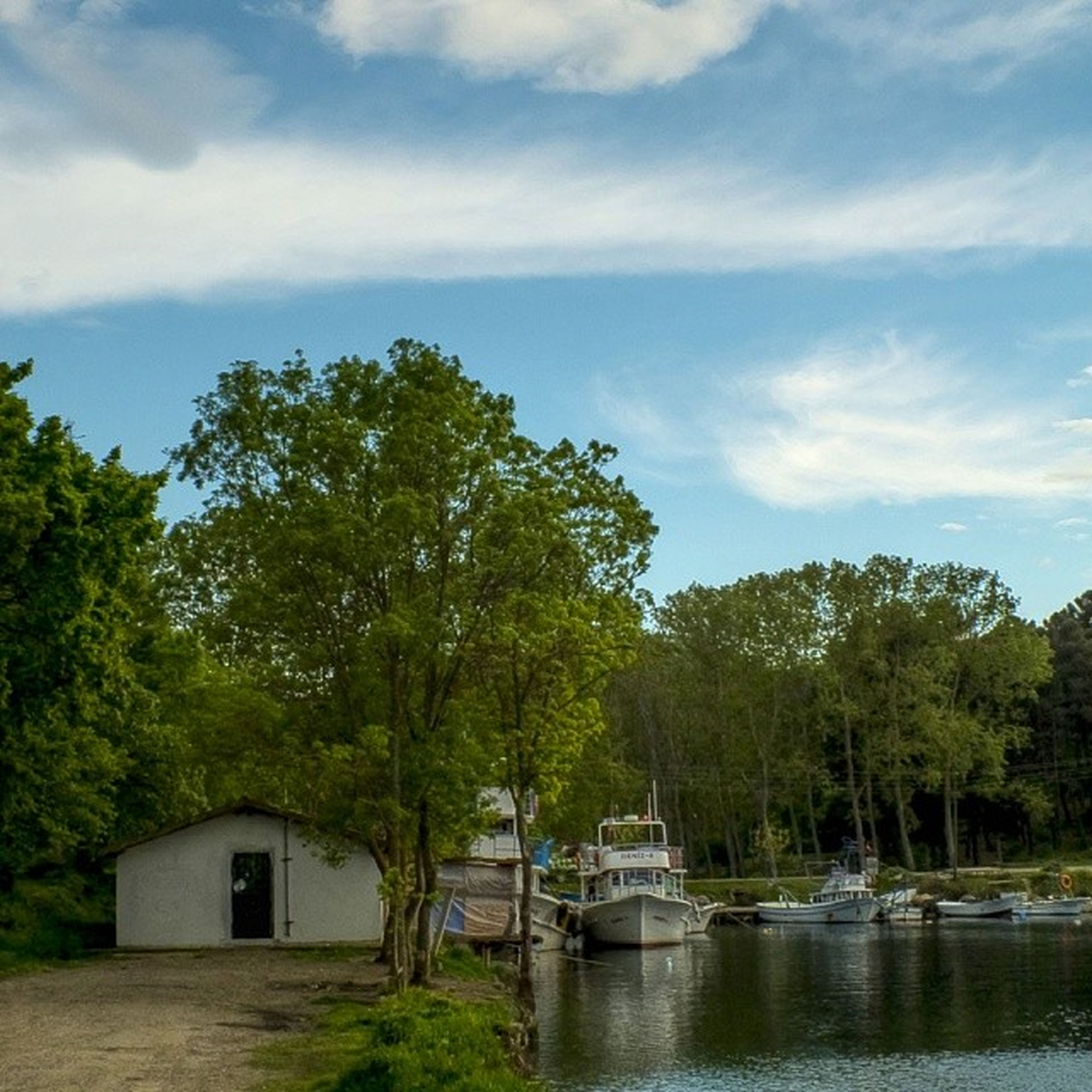 tree, water, nautical vessel, boat, transportation, mode of transport, moored, sky, nature, tranquility, lake, tranquil scene, river, growth, beauty in nature, scenics, cloud - sky, waterfront, day, built structure