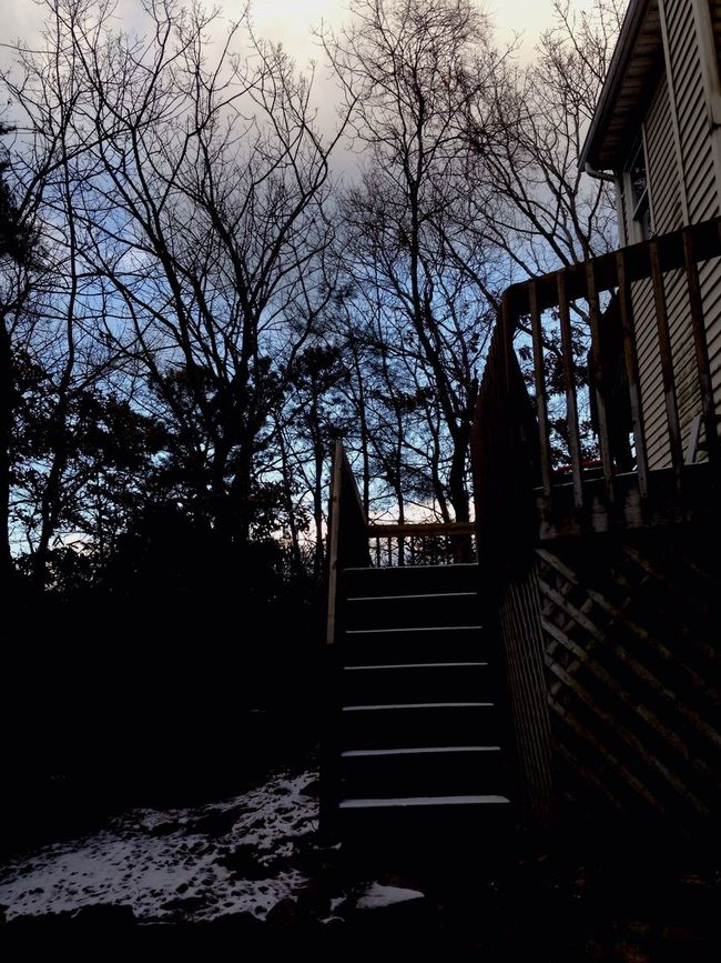 IPhoneography Landscape_Collection EyeEm Nature Lover Taking Photos Stairway To Heaven Winter Sky_collection