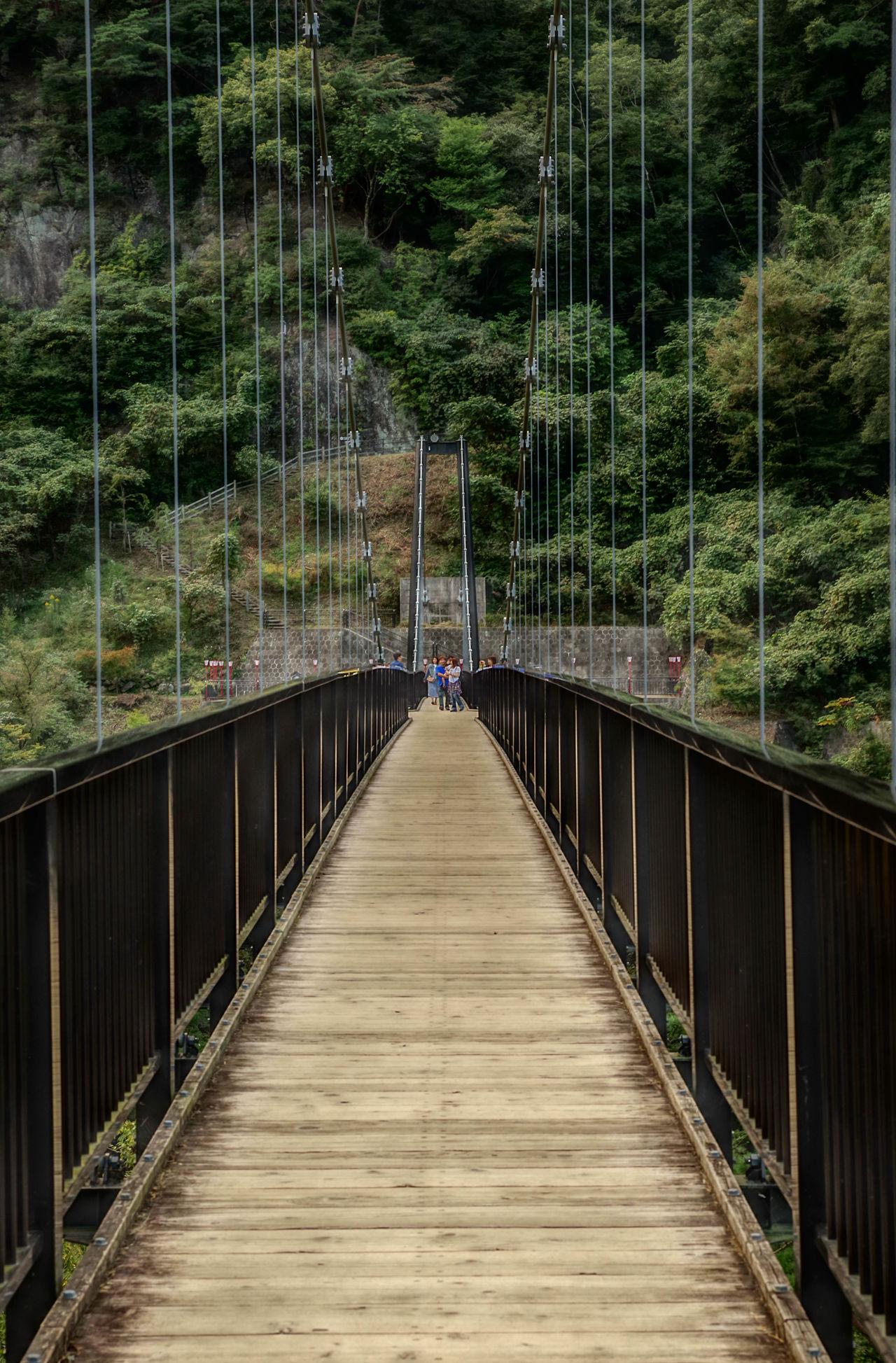 Suspension Bridge 鬼怒川 鬼怒川温泉 鬼怒楯岩大吊橋 日光 Hdr_gallery HDR Collection HDR