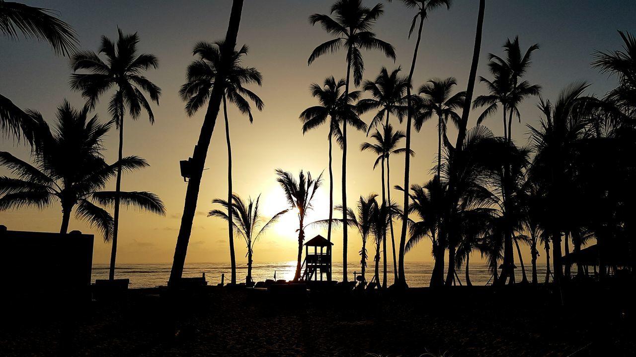 Good Morning Paradise!🌴 Dominican Republic Paradise! Sunrise Caribbean Caribbean Sunrise Eyemphotography Canon EOS 70D Eyem Best Shots Canon 70d Feel The Journey Summer Views Dominikanische Republik  DreamScapes Sunrise Photography