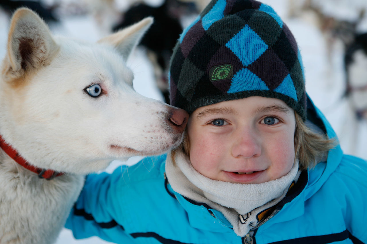 Beautiful stock photos of sweden, 8-9 Years, Animal Themes, Are, Boys