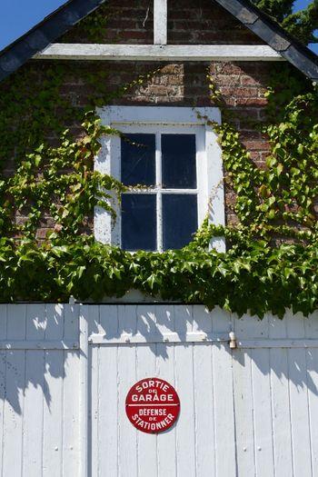 Architecture Building Exterior Window Sign Signs Signage Windows Door Doors