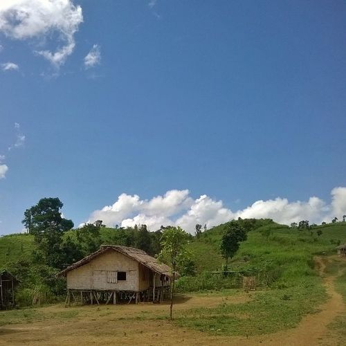 A bawm-house in New Rumana Para at Bandarban. Bawm is an ethnic group who live in the uppermost side of the hills. House Blue Sky Hill Ethnic Life Bandarban Bangladesh Hilltracks Travel TravelBangladesh BeautifulBANGLADESH Travelphoto Naturalbangladesh