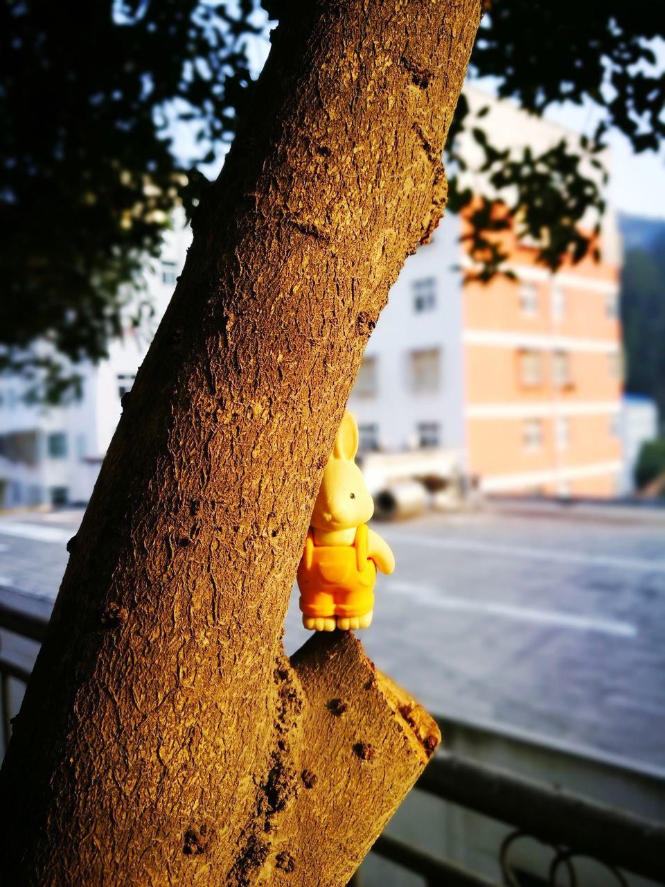 tree, focus on foreground, no people, tree trunk, yellow, outdoors, day, close-up, architecture, built structure, building exterior, nature, sky