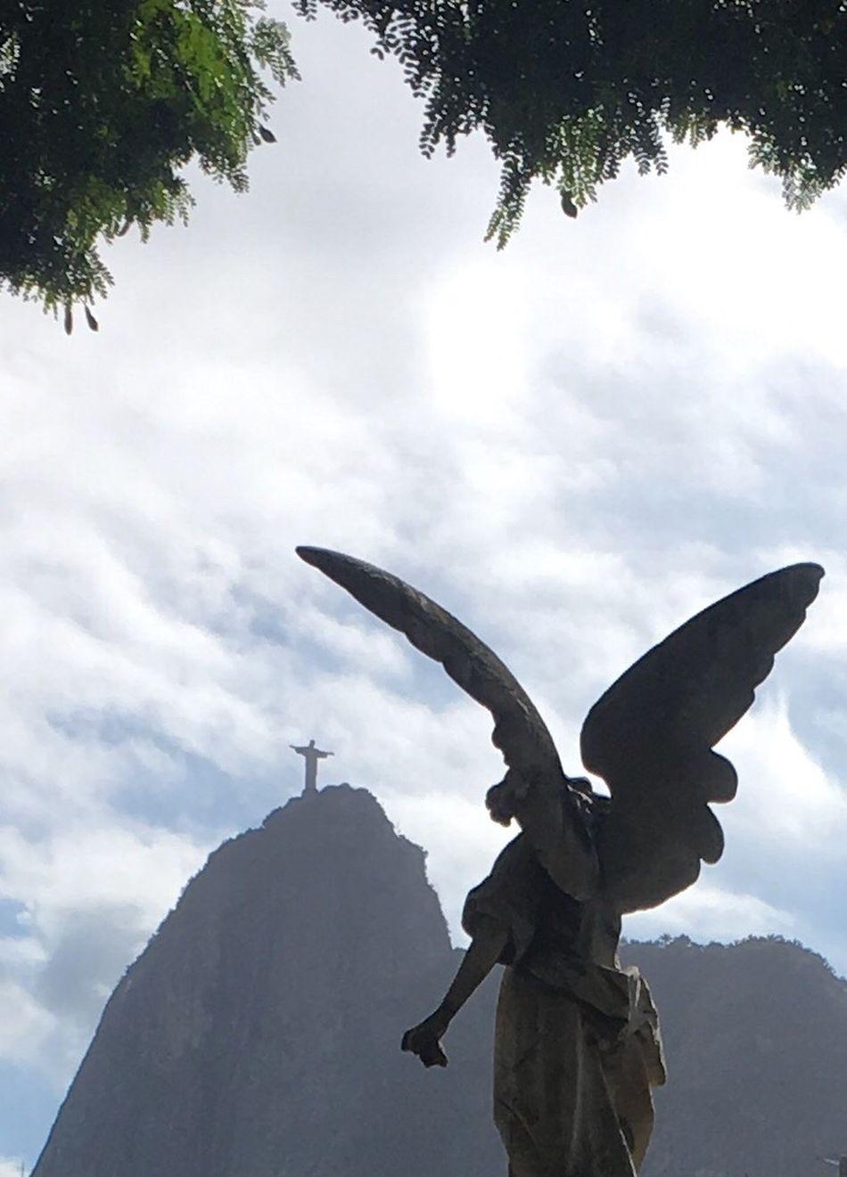 Statue sc Sculpture Low Angle View Day Sky Cloud - Sky No People Outdoors Tree Angel Cemetary Jesus Rio De Janeiro Corcavado