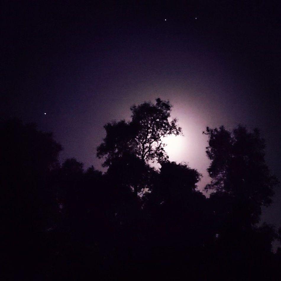 Amazing sky in Condeixa-a-Nova (Portugal) right now. No filter! 21MP it Xperia Z3 Compact 🌙 = ♥ Winter Moon Sky Cielo Céu Inverno Lua  XperiaZ3 XPERIA Sony NoEffects  Semfiltro Nofilter Condeixaanova P3 Sonyxperia @sonyxperia