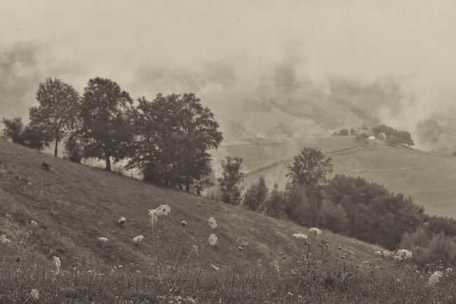 Past times Black & White Landscape Vintage Timeless Romania