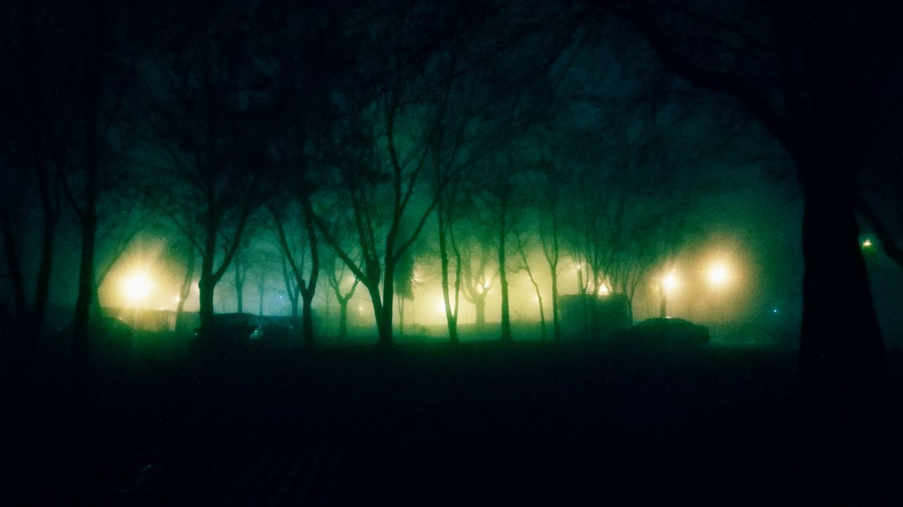 Fine Art Photography Foggy Night Light In The Fog UFO? Strange Light Trees In The Fog The Magic Mission The Color Of Technology Overnight Success