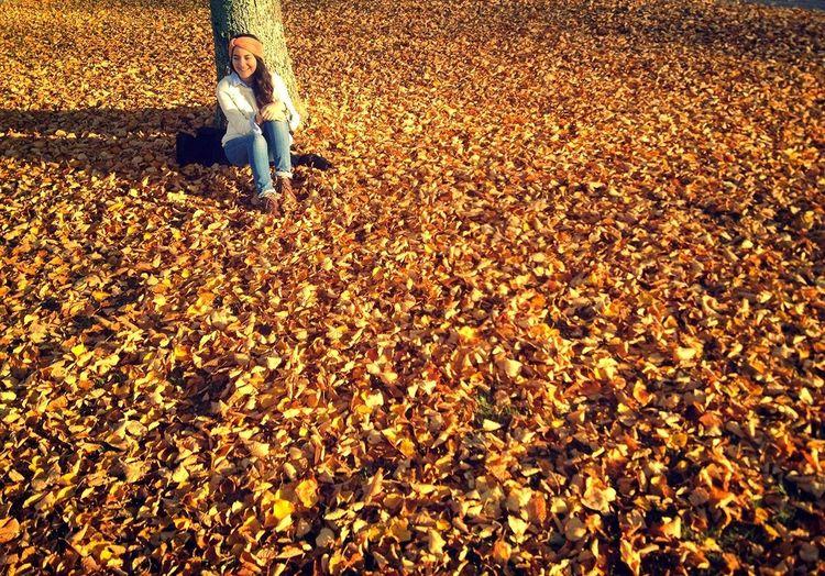 Lovelovelove Fall