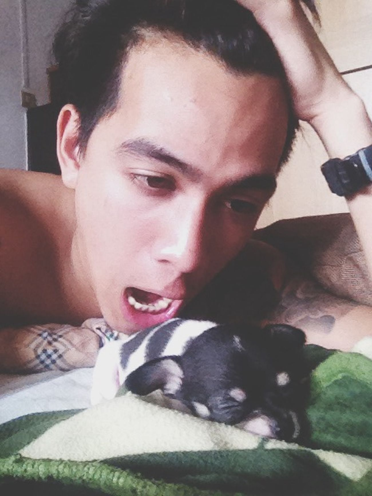 ผมชอบกินลูกหมาคับ