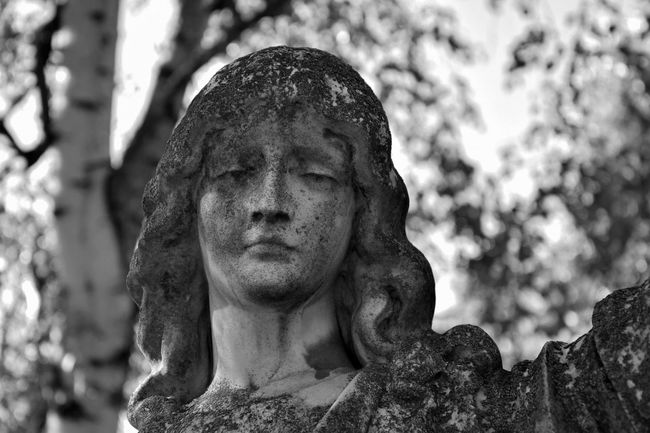 Statue Human Representation Sculpture Focus On Foreground Creativity No People Human Face Bokeh Cemetery Graveyard Beauty Graveyard Art And Craft Stone Material Blackandwhite Statue Black & White Black And White Black And White Photography Monochrome History Creativity Battle Of The Cities The Culture Of The Holidays