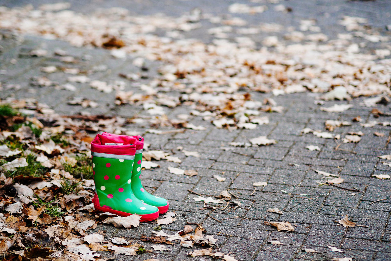 Polka Dots Autumn Day Empty Focus On Foreground Green Leaf Leafs No People Outdoors Polka Dots  Polkadots Rubber Boots Winter