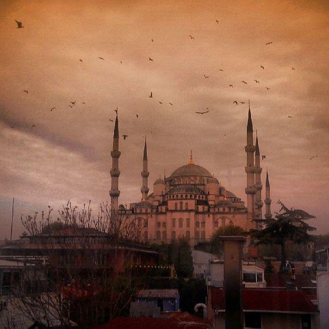 Istanbul Vistaterrazzacolazione Magic Mágica bellissima beautifull fantasticacitta picoftheday