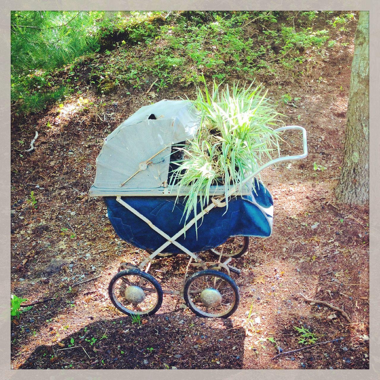 EyeEm Best Shots The Illusionist - 2014 EyeEm Awards Recycle Gardening