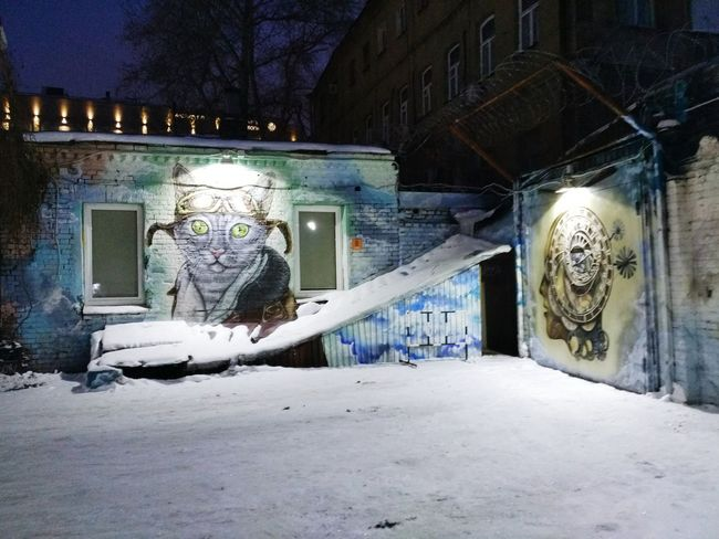 Whinter Graffiti Graffiti Wall Graffitiart Cat Night Snow Illuminated