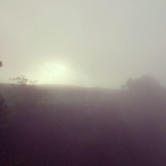 Foggy Tuesday morning. :) PhilexPadcal Benguet