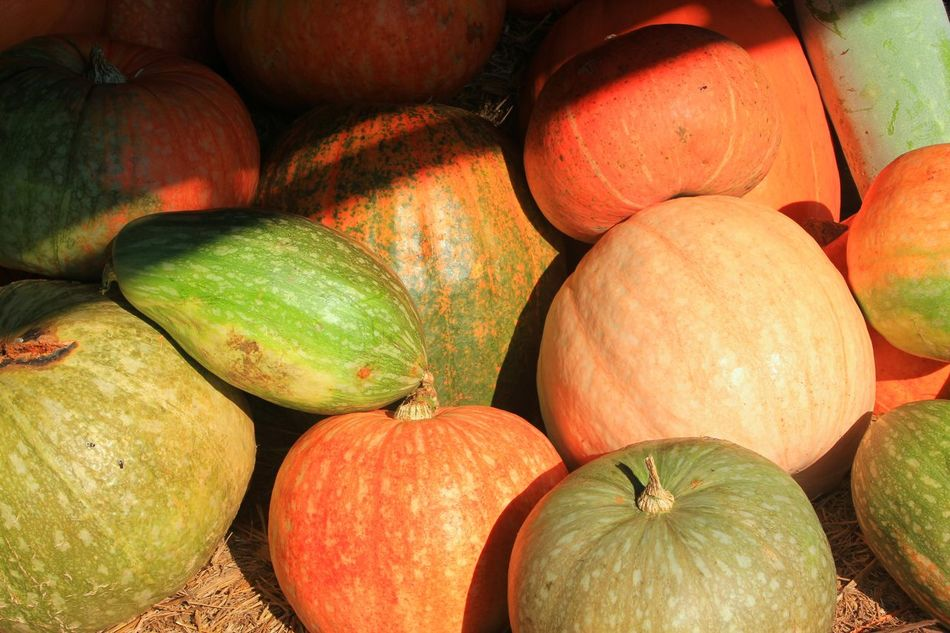 Backgrounds Big Pumpkins Close-up Day Food Food And Drink Freshness Fruit Full Frame Healthy Eating No People Outdoors
