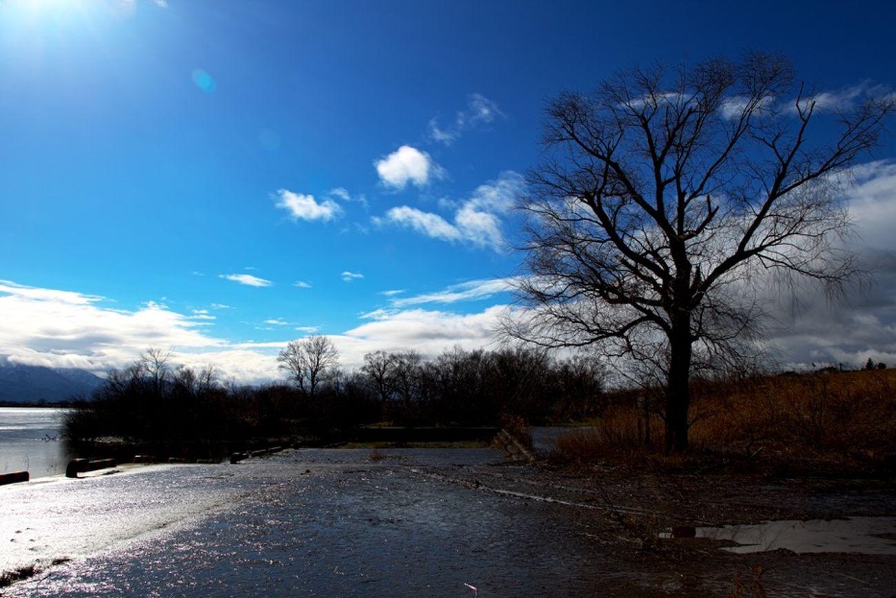 阿賀野川 Along The Riverside