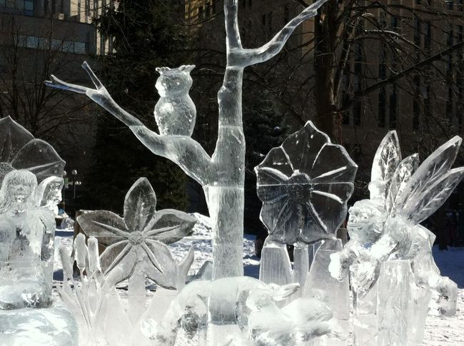 Art Ice Freezing Cold My Planet Is Beautiful