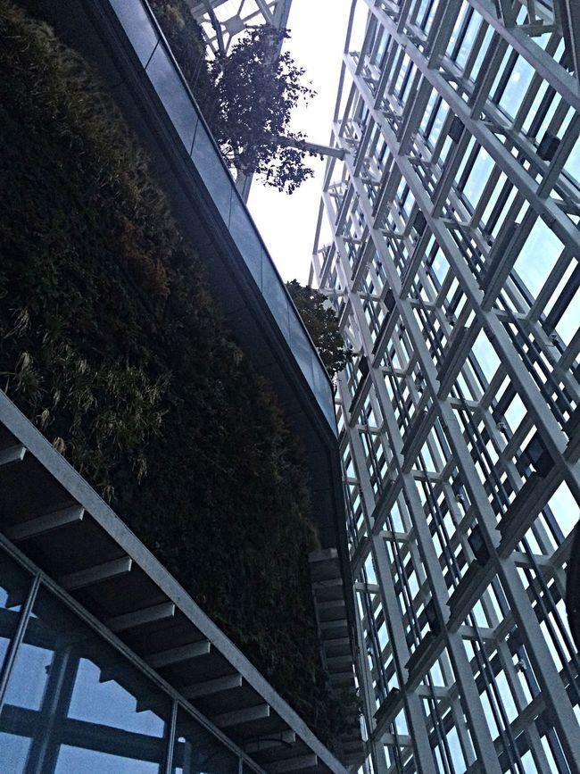 Jardin Vertical Working Meeting Architecture Enjoying The View