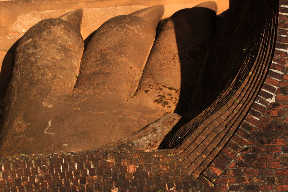 Ancient Civilization Close-up Day Detail Directly Above Lion Claws No People Old Sigiriya Rock Sri Lanka
