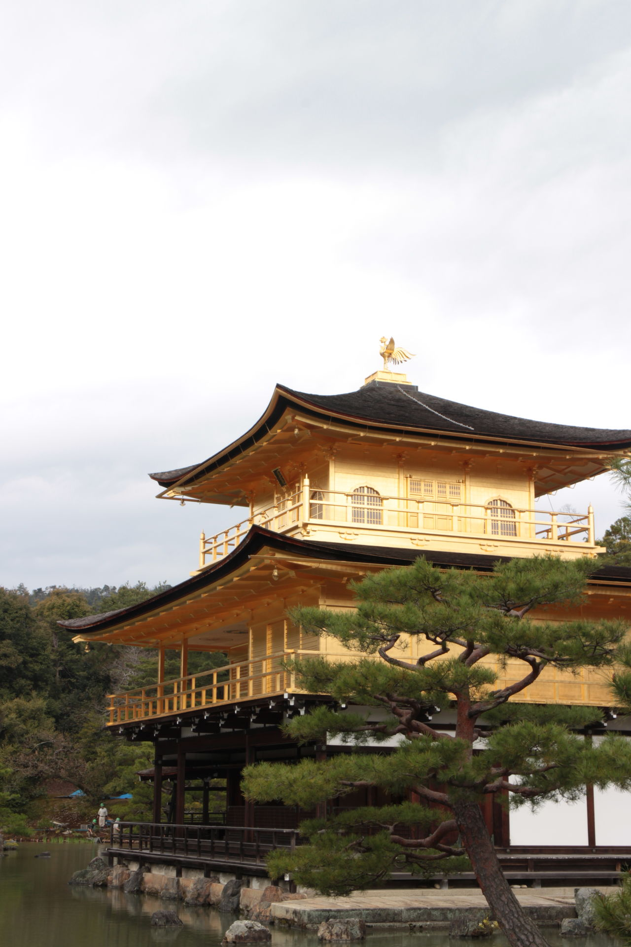 Architecture Building Exterior Built Structure Cloud - Sky Day Golden Temple Japan Japan Photography Kinkakuji Temple Kyoto No People Outdoors Place Of Worship Religion Roof Sky Travel Destinations Tree