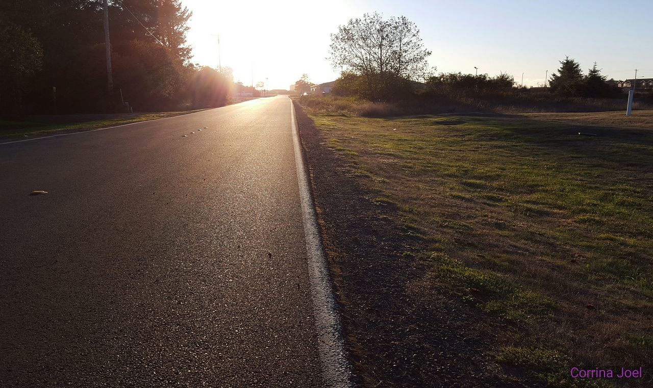road, tree, the way forward, no people, grass, landscape, outdoors, sunset, nature, day, sky