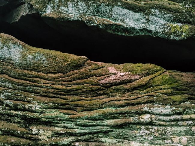 Colour Of Life Maximum Closeness Break The Mold