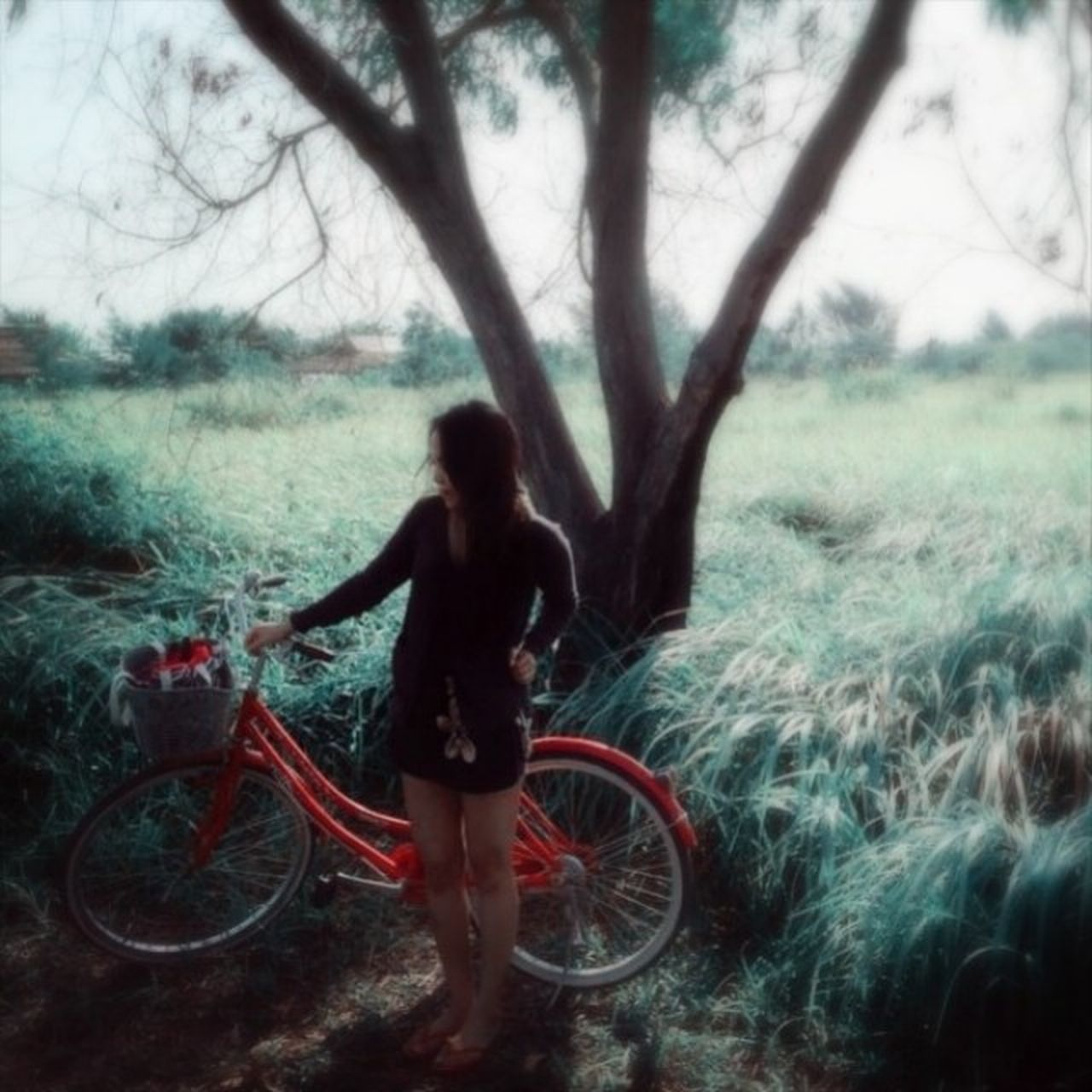 bicycle, one person, tree, real people, outdoors, cycling, day, transportation, full length, standing, bare tree, nature, grass, lifestyles, young adult, sky, people, adult