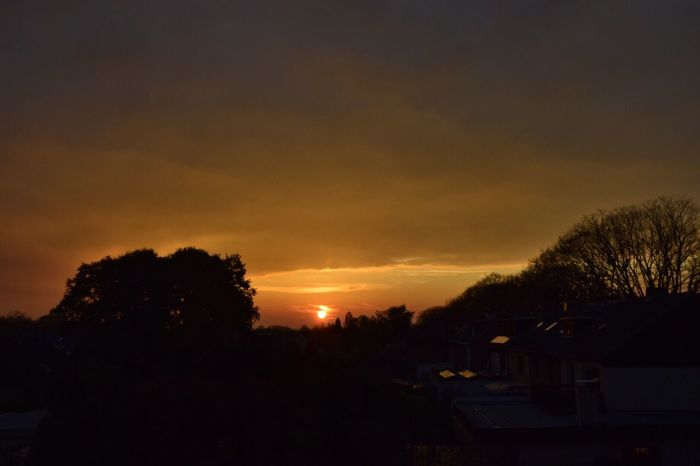 Nikon 5300 Sun Goes Down Hobby Nature No People Outdoors Sonnenuntergang ❤ Herbst Autumn