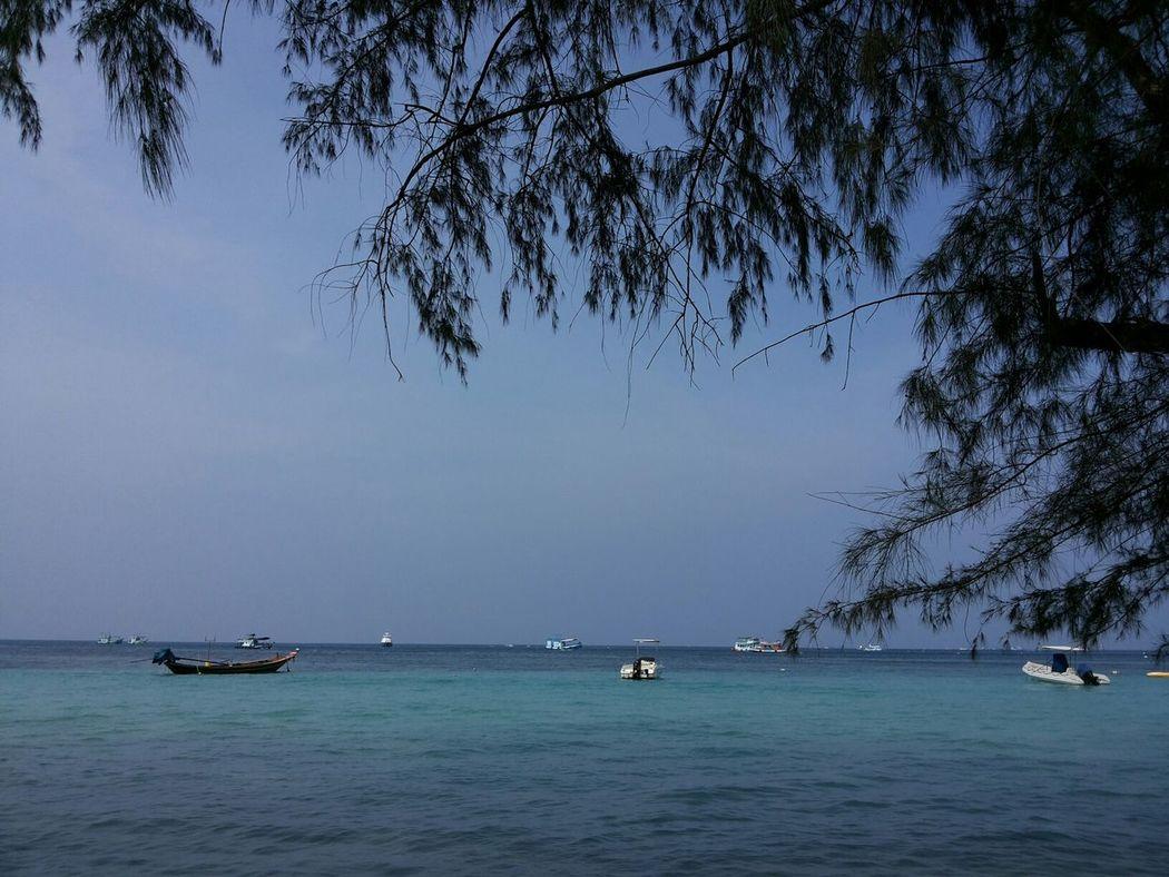The Purist (no Edit, No Filter) Thailand