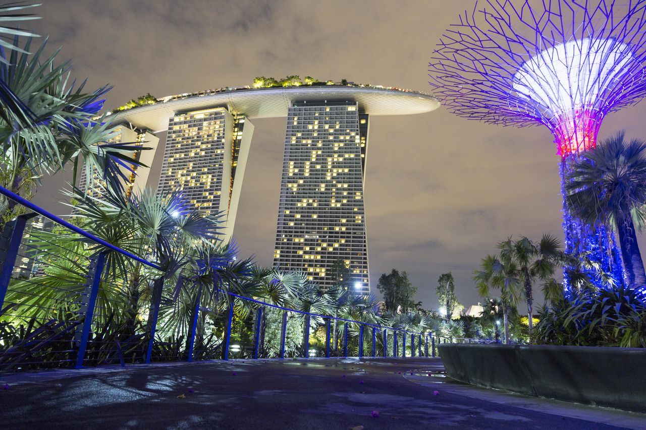 architecture, building exterior, built structure, illuminated, tree, skyscraper, modern, travel destinations, growth, city, outdoors, sky, no people, flower, nature, day