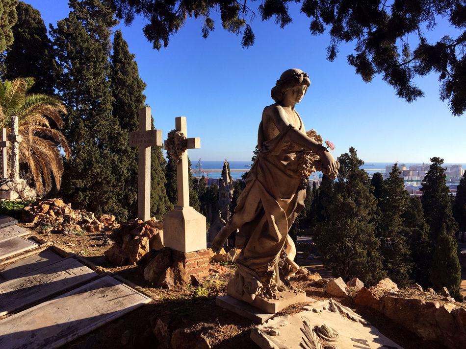 Architecture Barcelona Bcn Cementiri Cementiri De Montjuic Cemetery City Grave Graveyard Local Montjuic Nature Palm Palm Tree Park SPAIN Statue Stone Thomb
