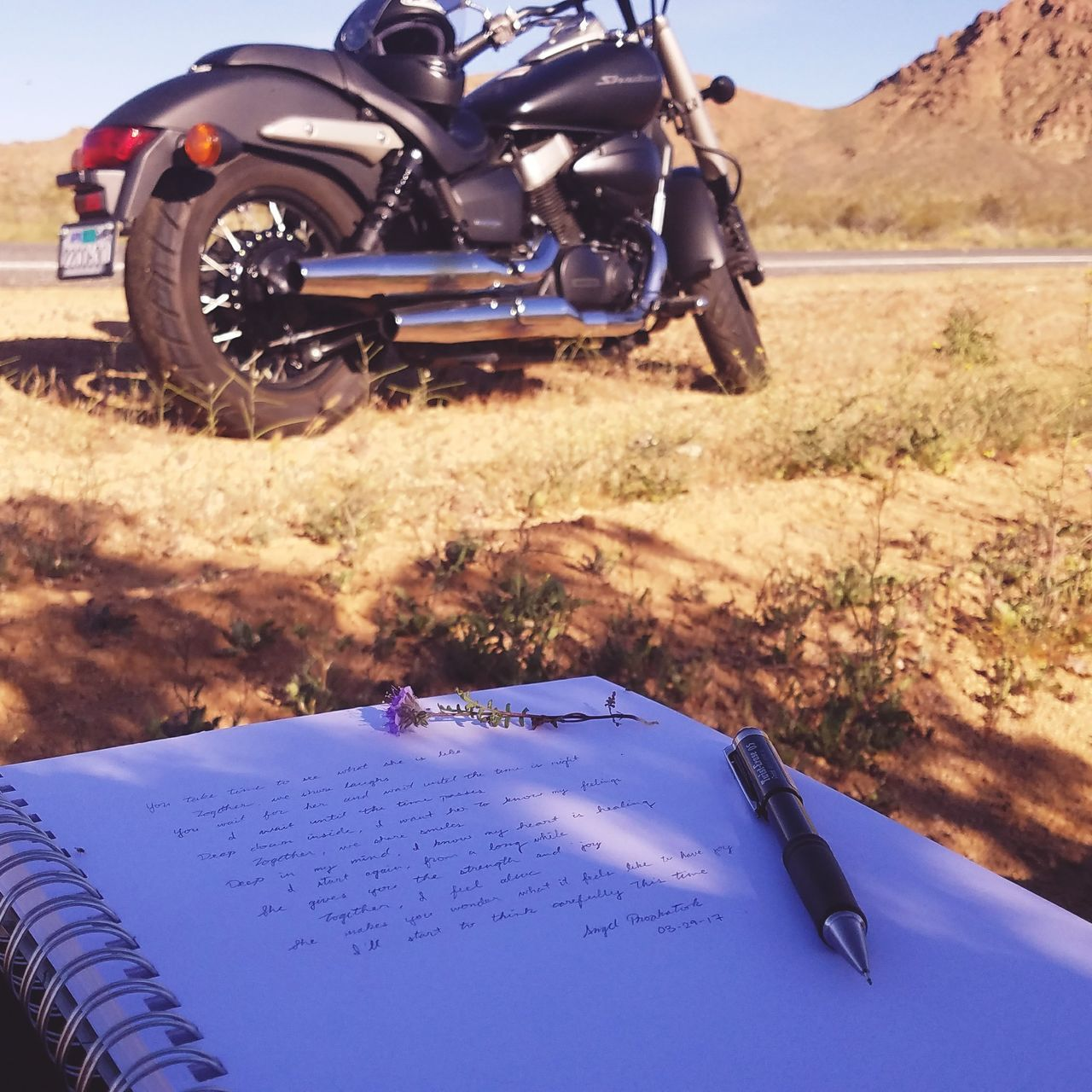 Outdoors Day Grass Nature Driving Nature Highway Barstow Barstowfwy Barstow, Ca Travel The Way Forward Poetry Poem Writing Flower Purple Purple Flower Motorcycle Motorcycle Trip Motorcycle Photography Motorcycle Helmet Honda HondaShadow