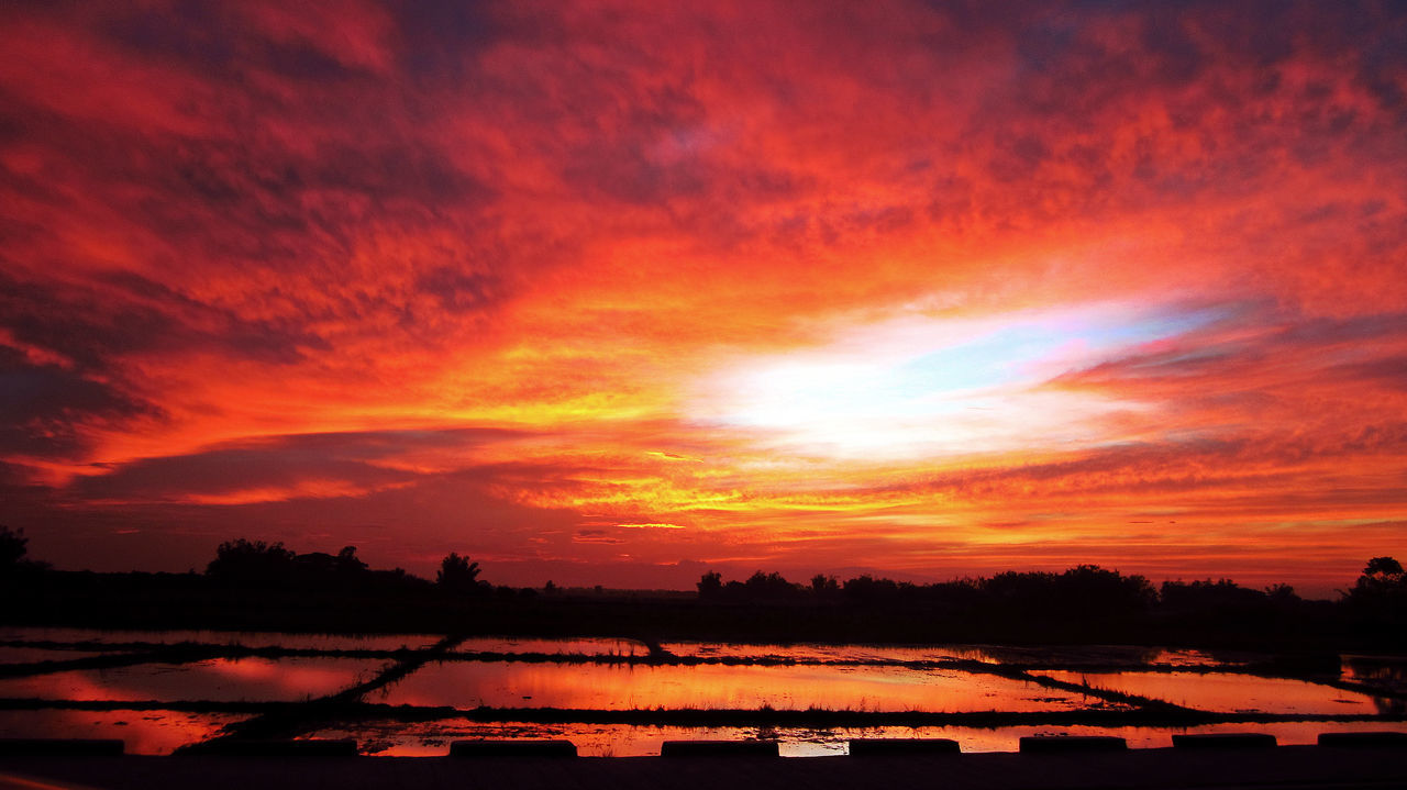 Afternoon Beautiful Nature Good Afternoon Good Afternoon! Nature Peaceful Reflection Rice Field Rice Fields  Serene Sunset Vermillion Vermillion Sky