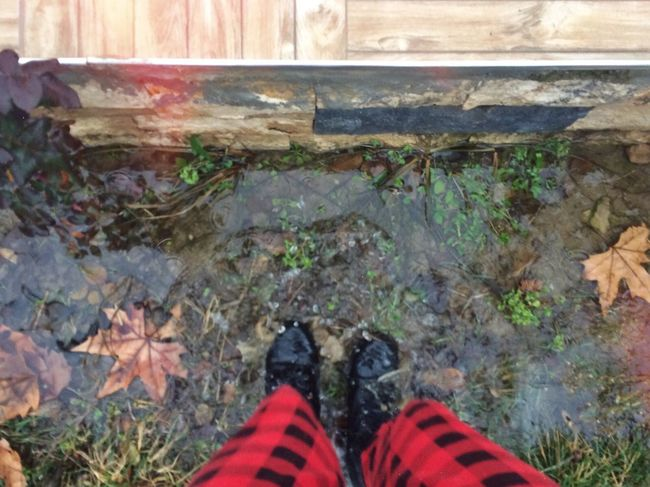 Water Shoe One Person Leaf Outdoors Nature Rain EyEmNewHere Adapted To The City