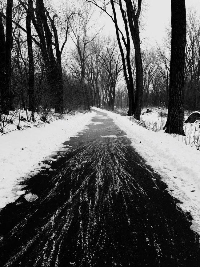 Winter Wintertime Winter Wonderland Winter Trees Winterscapes Winter_collection Winter Sky Winter Landscape Snow Snow Day Snow Covered Snowy Walking Around Walking Alone... Walking Path Minneapolis Minnesota Minnesota Nature Minnesotaphotographer