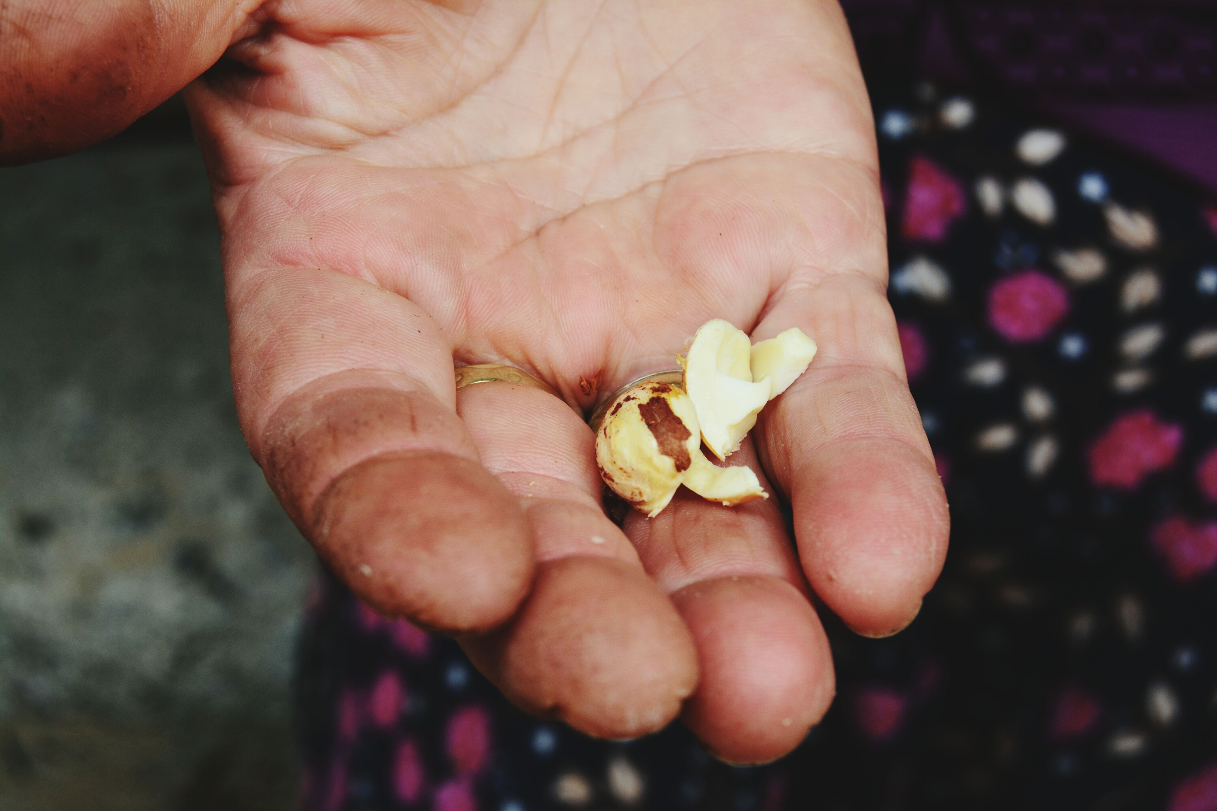 person, holding, freshness, human finger, part of, close-up, cropped, unrecognizable person, food and drink, food, flower, focus on foreground, fragility, healthy eating, nature, new life, fruit