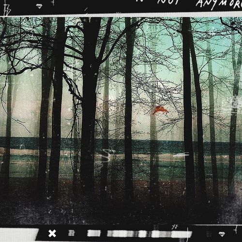 If you get the oppurtunity to live and be free, take it. There are two times, now and too late. Photoedit Photoediting