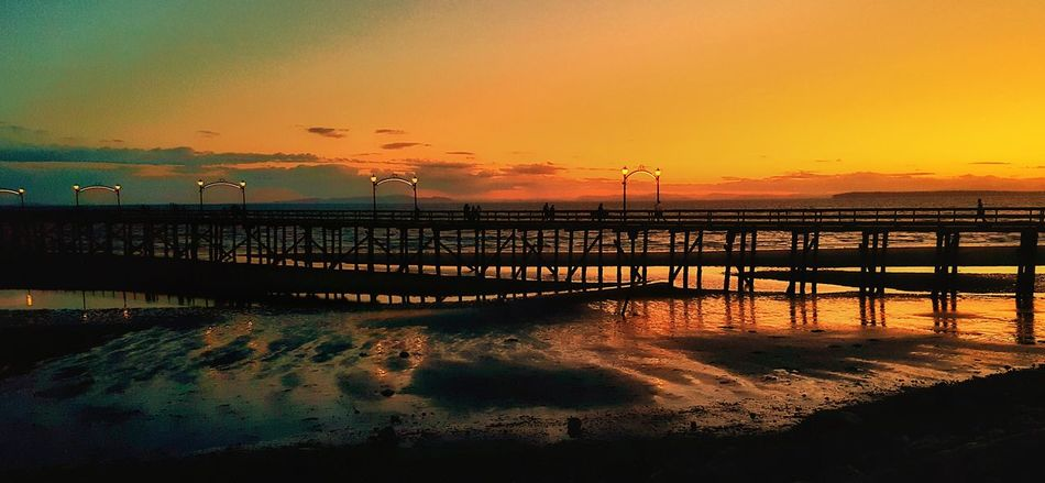 Sunset Dramatic Sky Sky Water Reflection Sea Sun No People Tranquility Large Group Of Animals Outdoors Beauty In Nature Scenics Nature Day Pink Color Silhouette Orange Color Night Tranquil Scene Bridge - Man Made Structure Cityscape Nature Travel Destinations Dramatic Sky