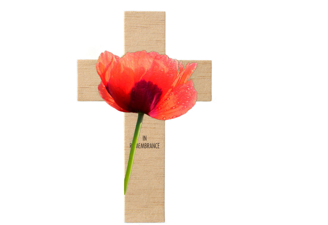 Admire Cross Honour Isolated On White Poppy Flower Red Color Remembrance Day Reminder Symbol White Background