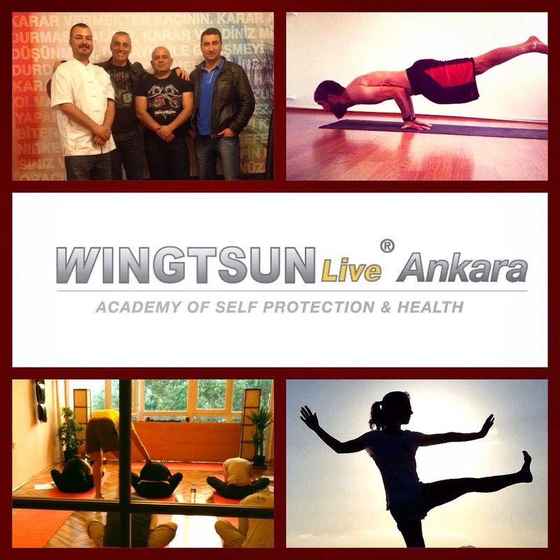 Wingtsun Yoga ॐ Tai Chi Academy 1 Eylül 2014 yeni sezon?