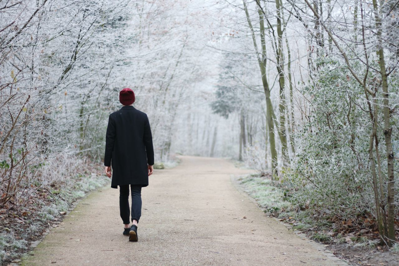 Beautiful stock photos of winter,  Adult,  Adults Only,  Day,  Footpath